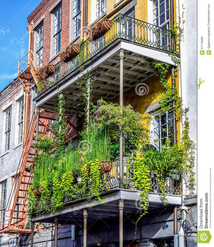 388 best images about fiori piante e giardini on pinterest - Giardini e fiori ...