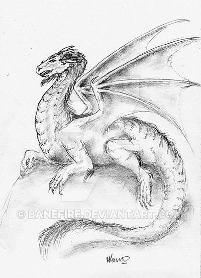 A quick pencil sketch of a draggy that I had done last year.