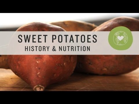 1000+ ideas about Yam Nutrition on Pinterest