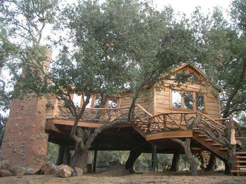 sandiego-tree-houseSan Diego, Treehouse To Living In, Tree Houses, Dreams House, Diego Treehouse, Full Bath, Trees House, Treehouse Design, Luxury Treehouse