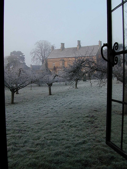 Frosty morning; view of the orchard, UK :)
