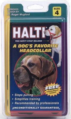 DOG TRAINING EQUIPMENT - WALK 'N TRAIN HEAD HALTER (HOLT) - SIZE 4 BLACK - COASTAL PET PRODUCTS, INC. - UPC: 76484514012 - DEPT: DOG PRODUCTS