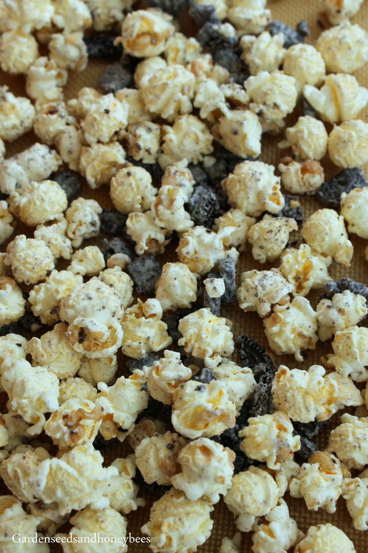Oreo Popcorn - Garden Seeds and Honey Bees