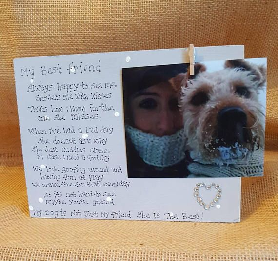 Check out this item in my Etsy shop https://www.etsy.com/uk/listing/571884780/best-friendpet-plaquedog-friend-cat