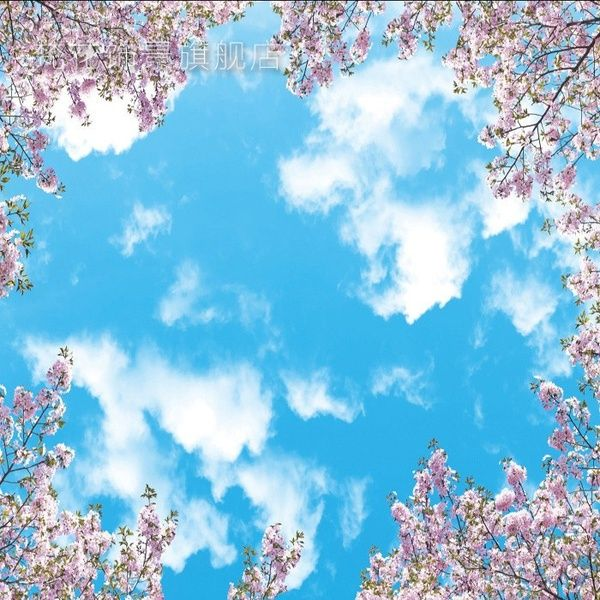 Wish Modern Minimalist Sky Sweet Cherry Blossom Blue Sky And White Cloud Ceiling 3d Wallpaper Wallpaper Wallp Tapeten Wandbilder Tapeten 3d Hintergrundbilder Blue cherry blossom wallpaper