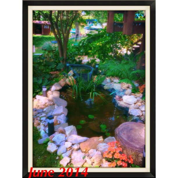 Best 25 Plastic Pond Liner Ideas On Pinterest Pond Tubs