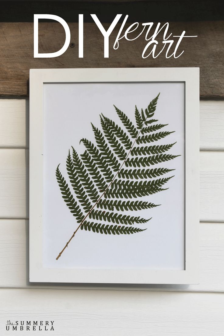 Create a beautiful piece of work with this super, simple DIY Fern Art tutorial. All you need is a few basic materials!