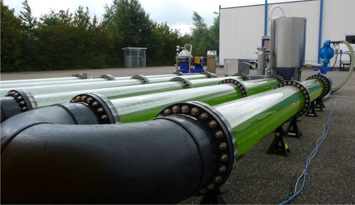 Algal Bioreactors