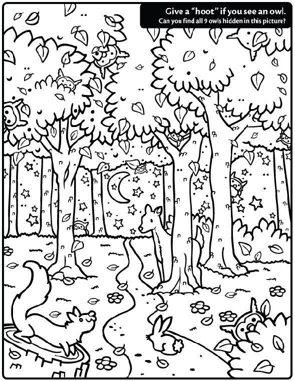 'Hidden Owl Find' coloring page