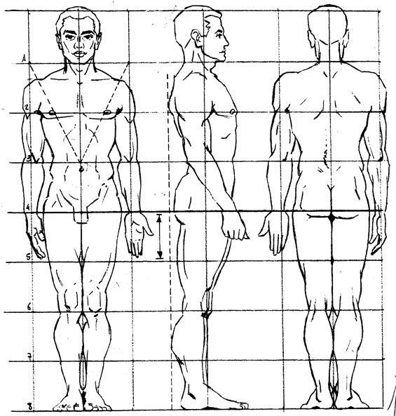figura humana de espalda dibujo anatomia masculina - Buscar con Google