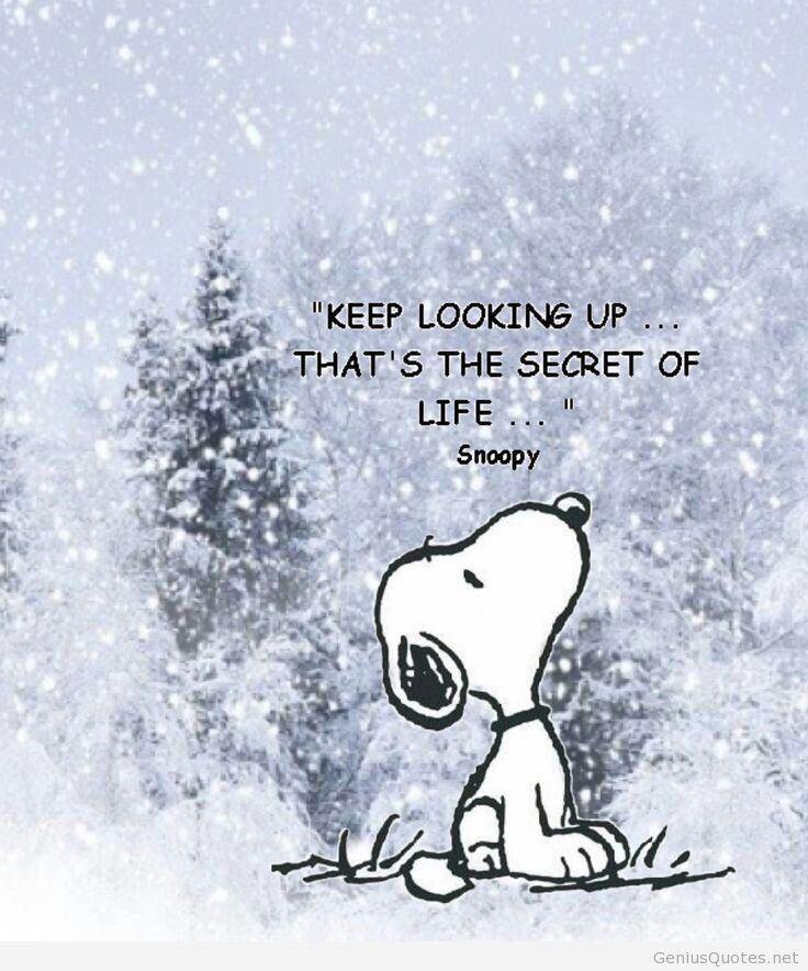 #Snoopy #Peanuts #Charles M Shulz