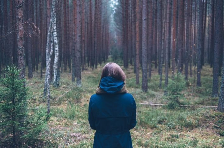 No to a coffin. Yes to a tree. The letter I've written to my kids about my funeral. — Thoughts On What Matters