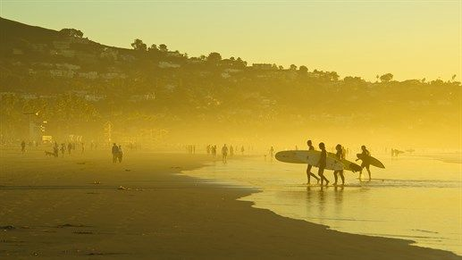 Surfers in the sunsrise coming out of the water #kilroy #surfers #surflife #surferdude #surferbabe #surfing
