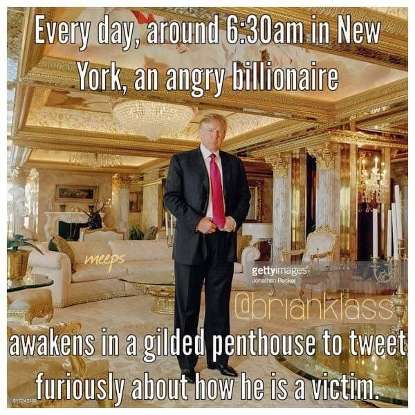 Aww, poor Donnie. Everyone is so unfair to the billionaire narcissistic megalomaniac. I can't imagine how hard life is for him!!