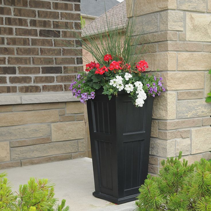 Best 25 tall planters ideas on pinterest sideyard ideas for Planter ideas for front of house