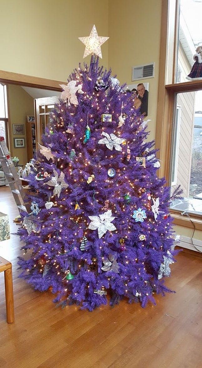 Omg You Can Get Real Purple Pink Christmas Trees At This Tree Farm Purple Christmas Tree Pink Christmas Tree Purple Christmas Lights