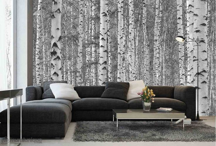 Birch Tree Forest (Black and White) | Buy Prepasted Wallpaper Murals Online - Muralunique.com