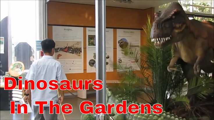 Dinosaurs in th Auckland Botanic Gardens| O come all ye faithful