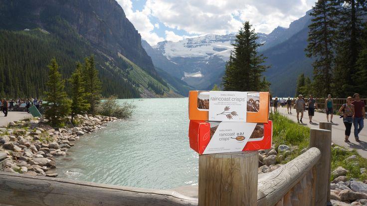 A Raincoast team member went to Banff National Park in Alberta. Isn't Lake Louise beautiful?