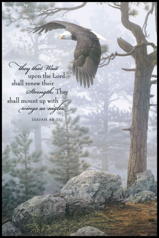 """""""They that wait upon the Lord shall renew their strength; they shall mount up with wings as eagles; they shall run and not be weary; they shall walk and not be tired."""" - Isaiah 40:31"""
