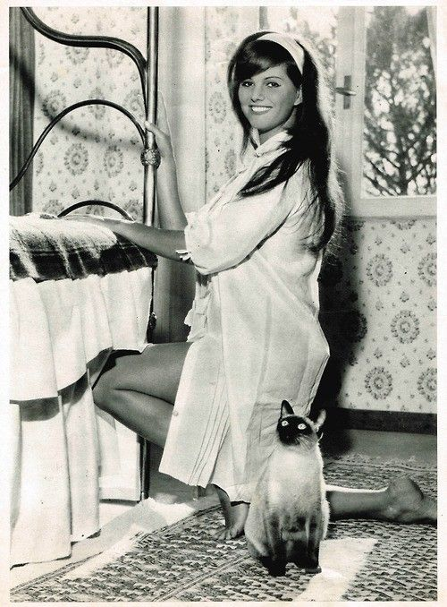 Italian actress, Claudia Cardinale with her Siamese cat. ♡... Re-pin by StoneArtUSA.com ~ affordable custom pet memorials for everyone.
