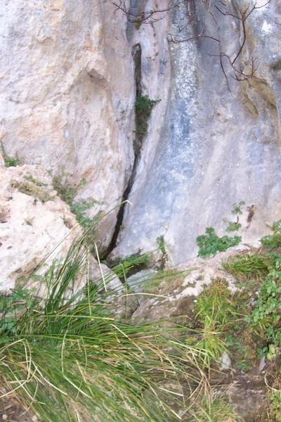 """the spring called """"orris"""" (mouths) in La Roquebrussanne ..."""