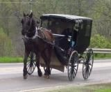 Understanding The Amish Culture