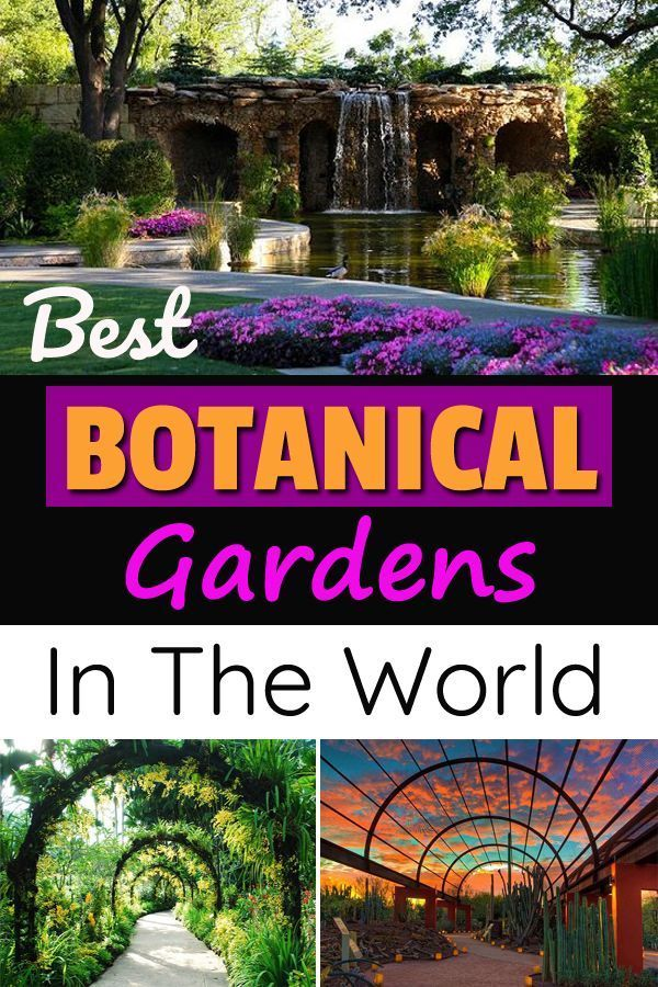 7e3a6f6b5fc8e95df3ce71fec8a152aa - Best Botanical Gardens In United States