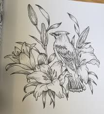 Image result for Angela porter coloring pages
