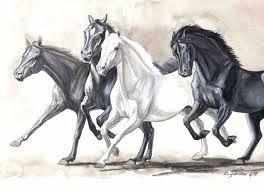 Výsledok vyhľadávania obrázkov pre dopyt kone kreslene