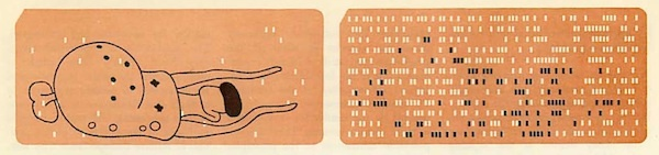 These punchcard images are a fascinating artifact of early computational biology, anticipating a very different future than what we have today, a future based not on gene sequence but the automation of phenotypic characterization.