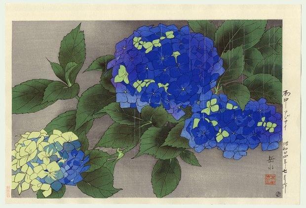 japanese hydrangea woodblock print
