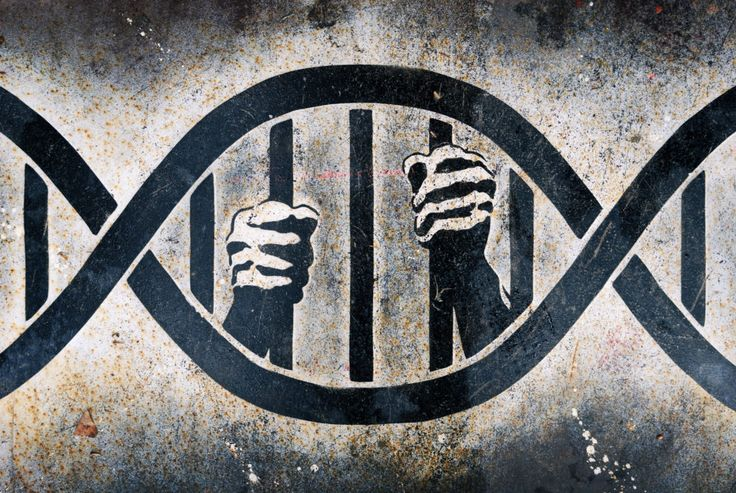 The Omaha World-Herald reported on April 3rd that a judge has ordered DNA testing for Nebraska Innocence Project client Antoine Young.
