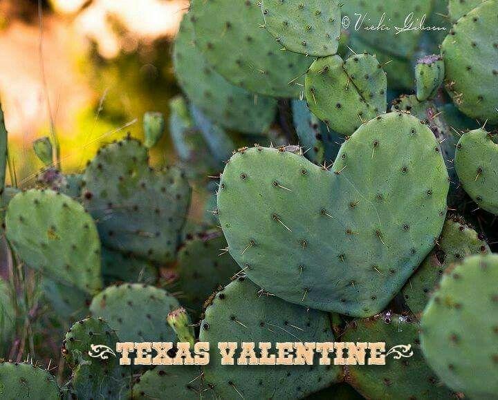 valentine texas