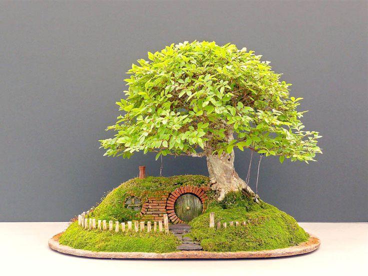 beautiful home interiors with unique bonsai ornamental plants home small version