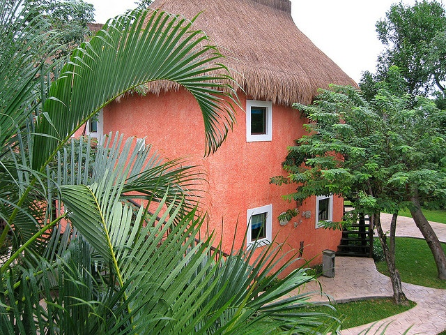cottage in Cozumel. love the roof: Photo