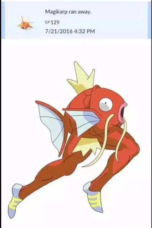 [Meme]When Magikarp runs away