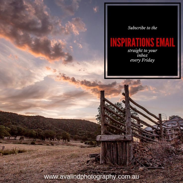 """The very first Inspirations Email goes out tomorrow! If you want beautiful rural landscapes straight to your inbox every Friday subscribe to the list now! I'll also send one lucky subscriber an 8""""x12"""" unframed print of your choice, winner drawn on the 15th of every month."""