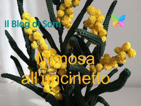 Nota sopratutto come fiore reciso dal caratteristico e intenso profumo è ormai da tempo il simbolo della Festa della Donna . La Mimosa ...