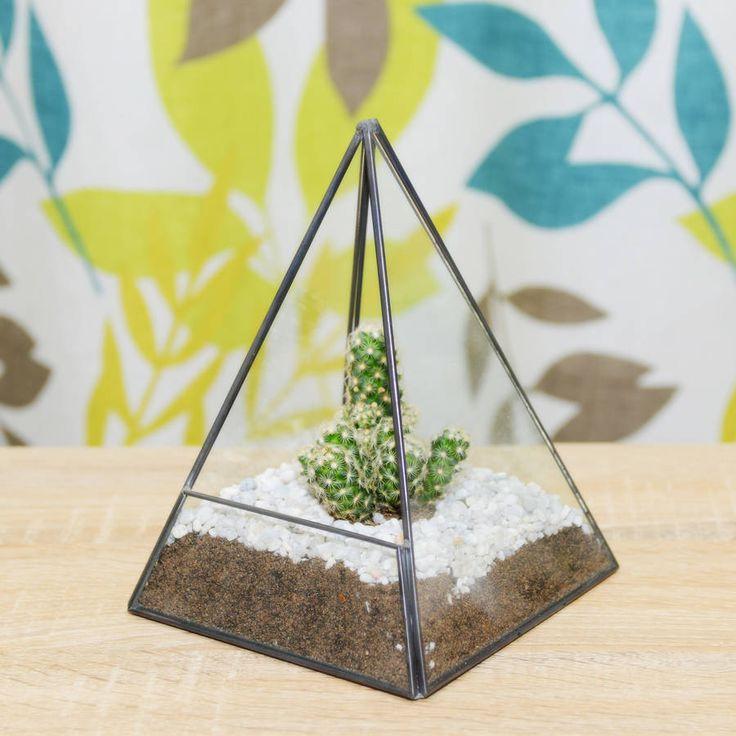 Pyramid Geometric Cactus #Terrarium. House Your Cactus And Small #plants In  This Terrarium