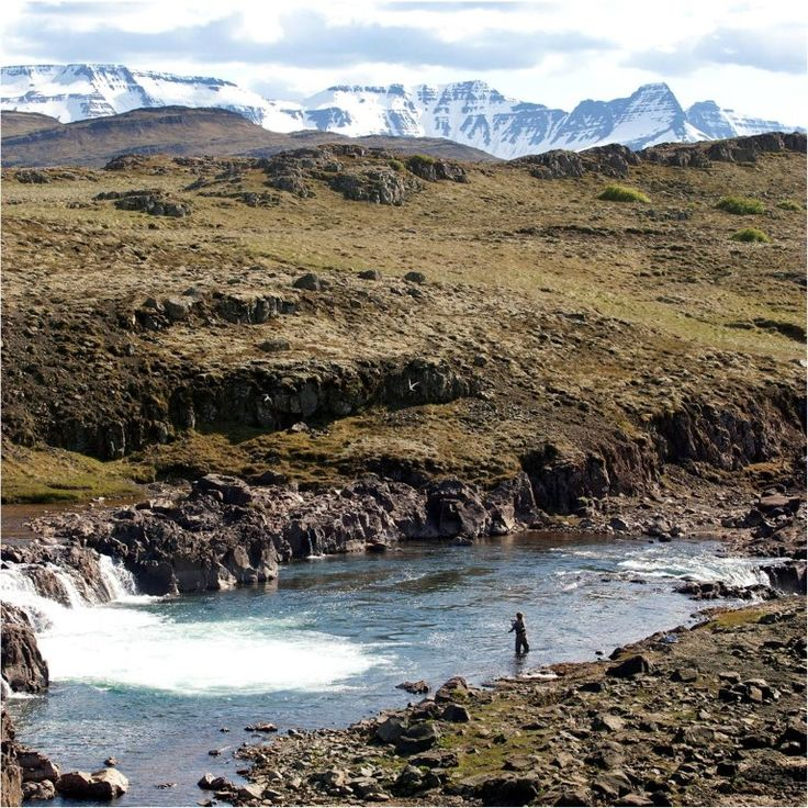 1000 images about fly fishing in iceland on pinterest for Fishing in iceland