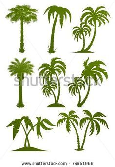 palm tree design tattoo - Google zoeken