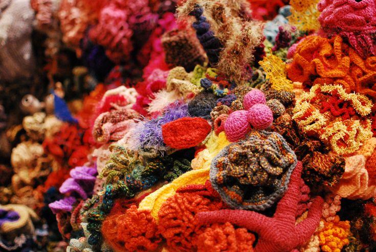 Hyperbolic Crochet Coral Reef VA 11