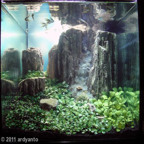 150 best aquariums and aquascaping images on pinterest for Waterfall fish tank