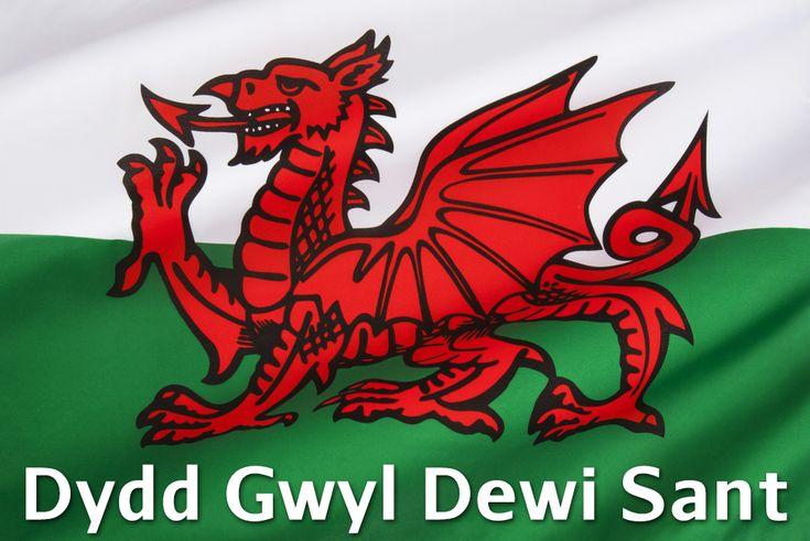 Saint Davids Flag - Google zoeken