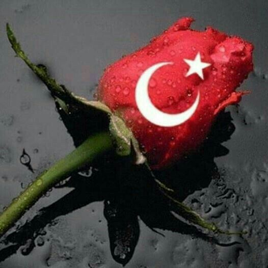 güller kadar güzel ve özelsin şanlı bayrağım