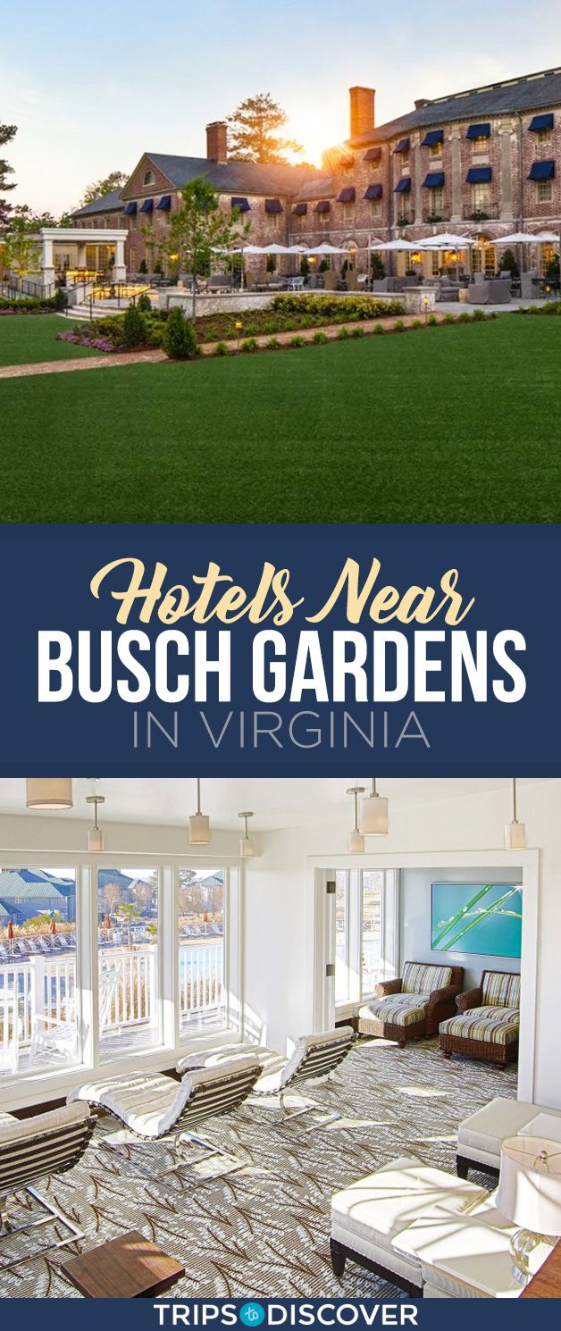 Hotels Near Busch Gardens Williamsburg Virginia Beach