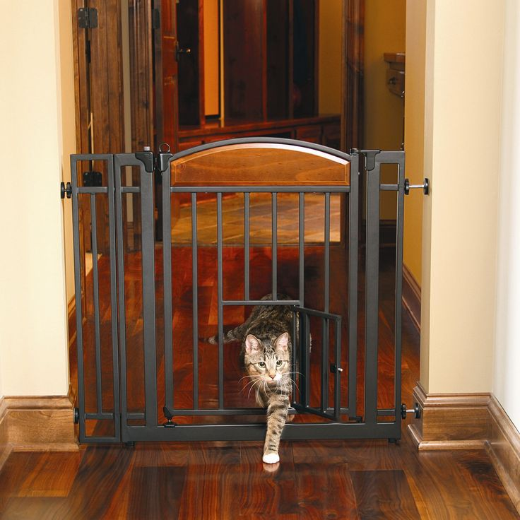 Best 25 Pet Gate Ideas On Pinterest Diy Dog Gate Diy