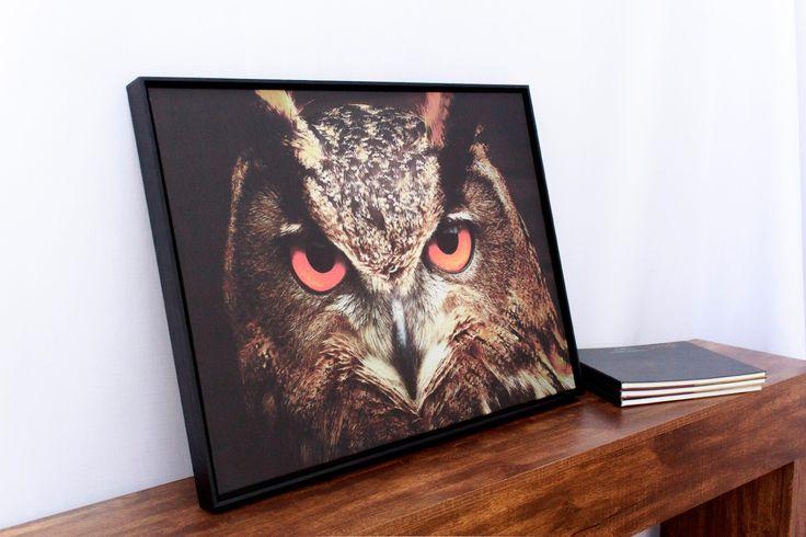 Quadro Tela Decorativa Emoldurada Coruja de Olhos Vermelhos 76x58cm