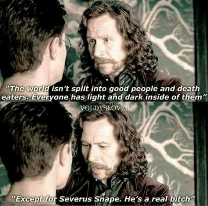 One of my favorite quotes from Sirius and the Harry Potter series! Minus the Snape part lmao ~AS